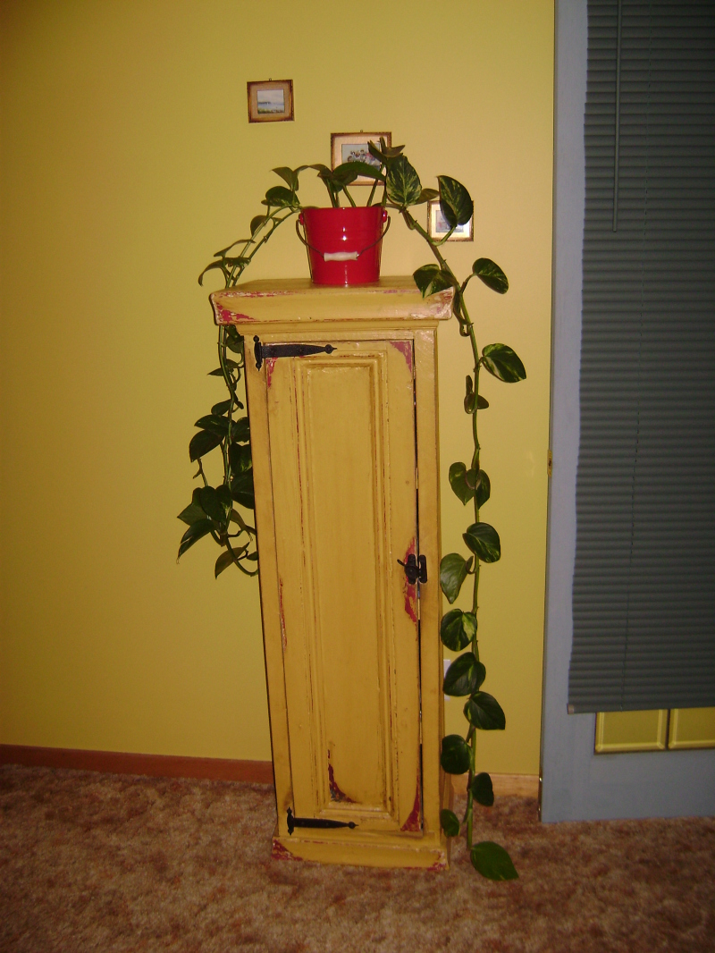 5P-Tall Yellow Door Panel Cabinet